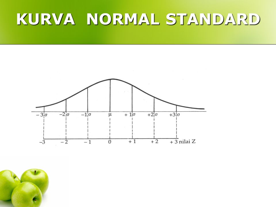 KURVA NORMAL STANDARD