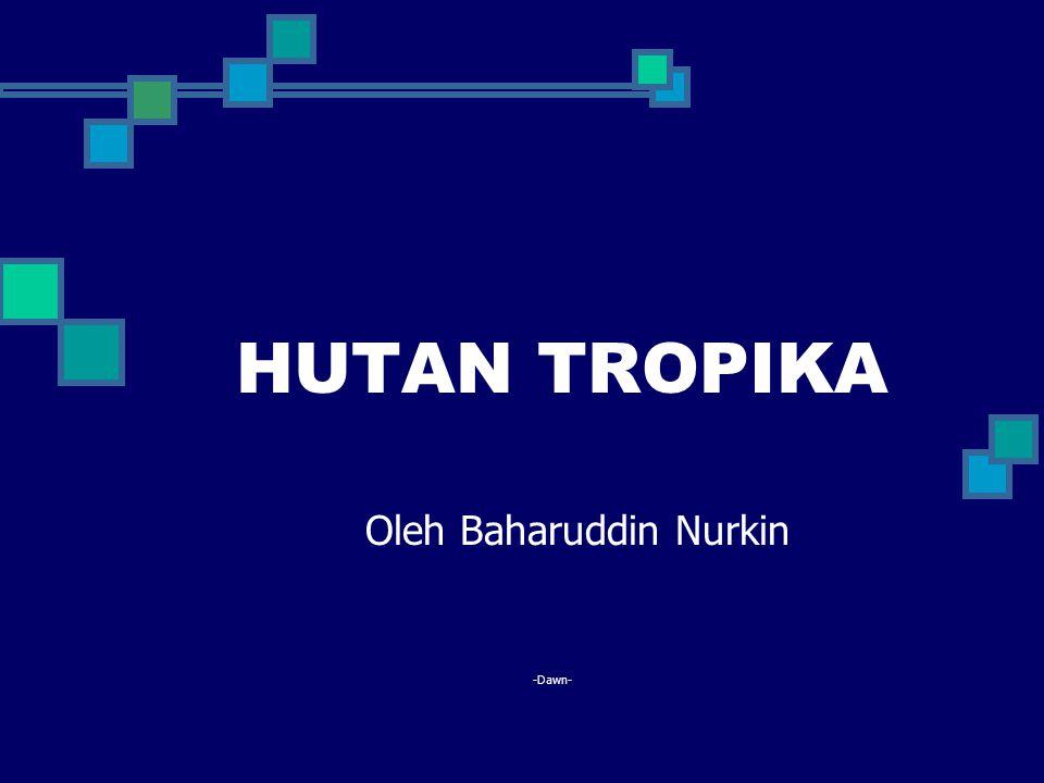 Oleh Baharuddin Nurkin