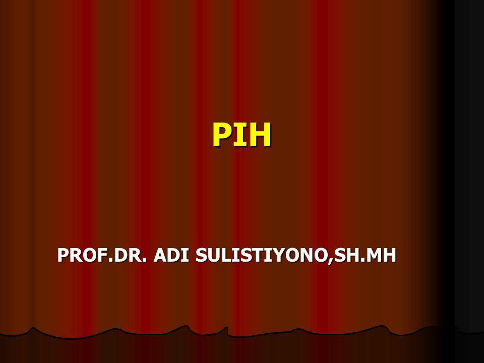 PROF.DR. ADI SULISTIYONO,SH.MH