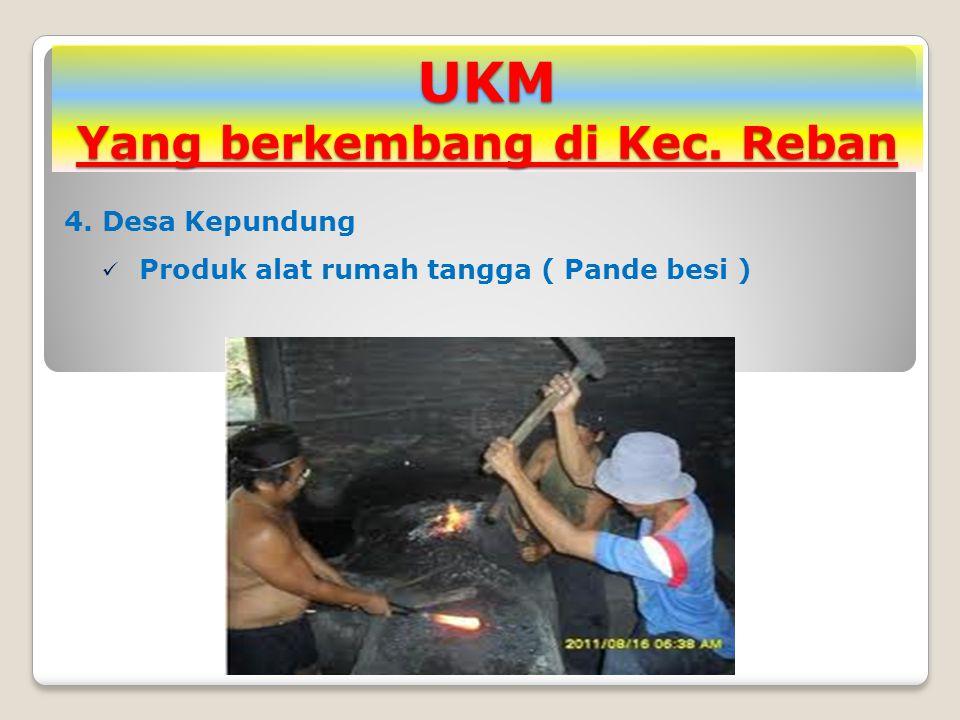 UKM Yang berkembang di Kec. Reban