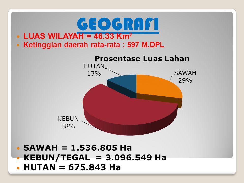 GEOGRAFI LUAS WILAYAH = 46.33 Km2 SAWAH = 1.536.805 Ha