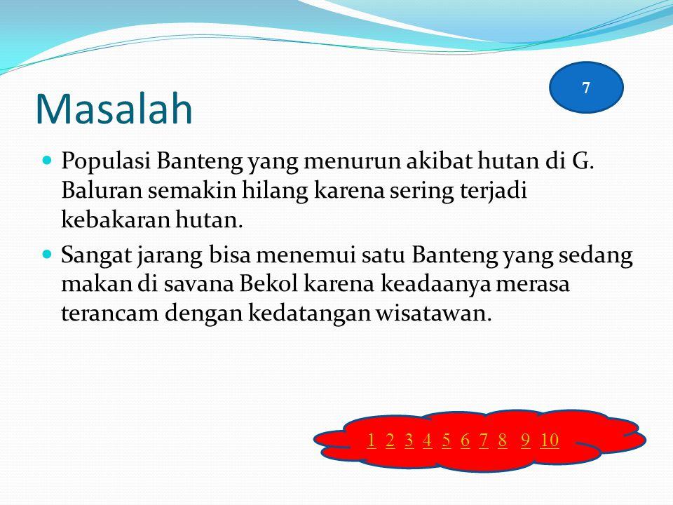 Masalah 7. Populasi Banteng yang menurun akibat hutan di G. Baluran semakin hilang karena sering terjadi kebakaran hutan.