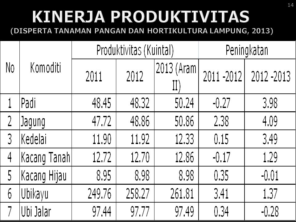 KINERJA PRODUKTIVITAS (DISPERTA TANAMAN PANGAN DAN HORTIKULTURA LAMPUNG, 2013)