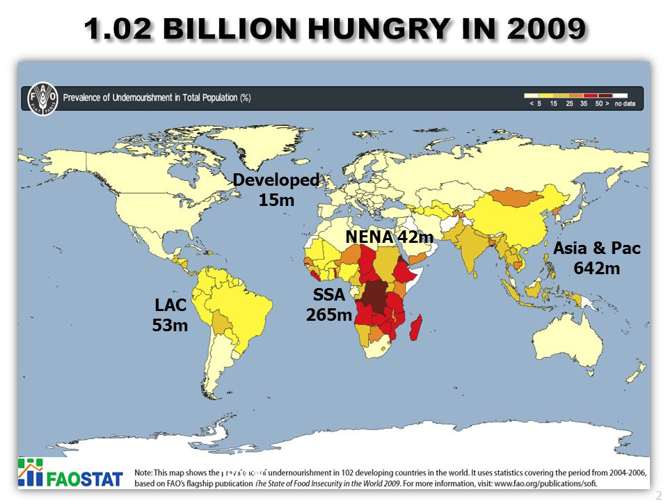 1.02 BILLION HUNGRY IN 2009 Developed 15m NENA 42m Asia & Pac 642m SSA