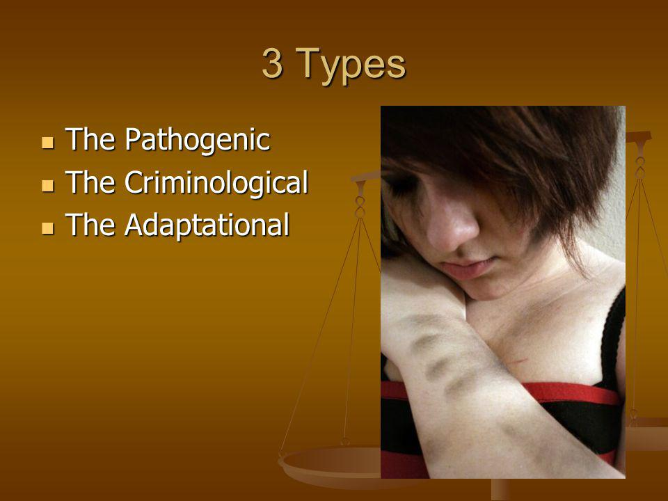 3 Types The Pathogenic The Criminological The Adaptational