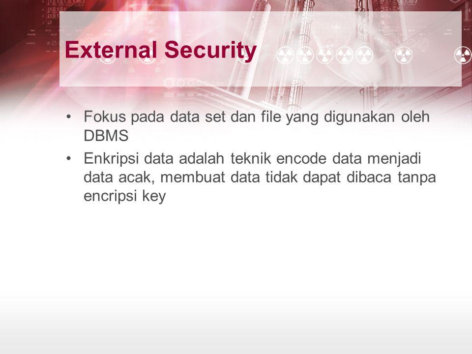 External Security Fokus pada data set dan file yang digunakan oleh DBMS.