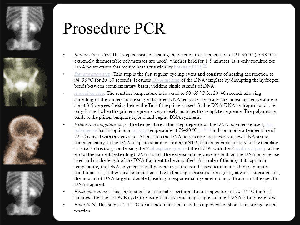 Prosedure PCR