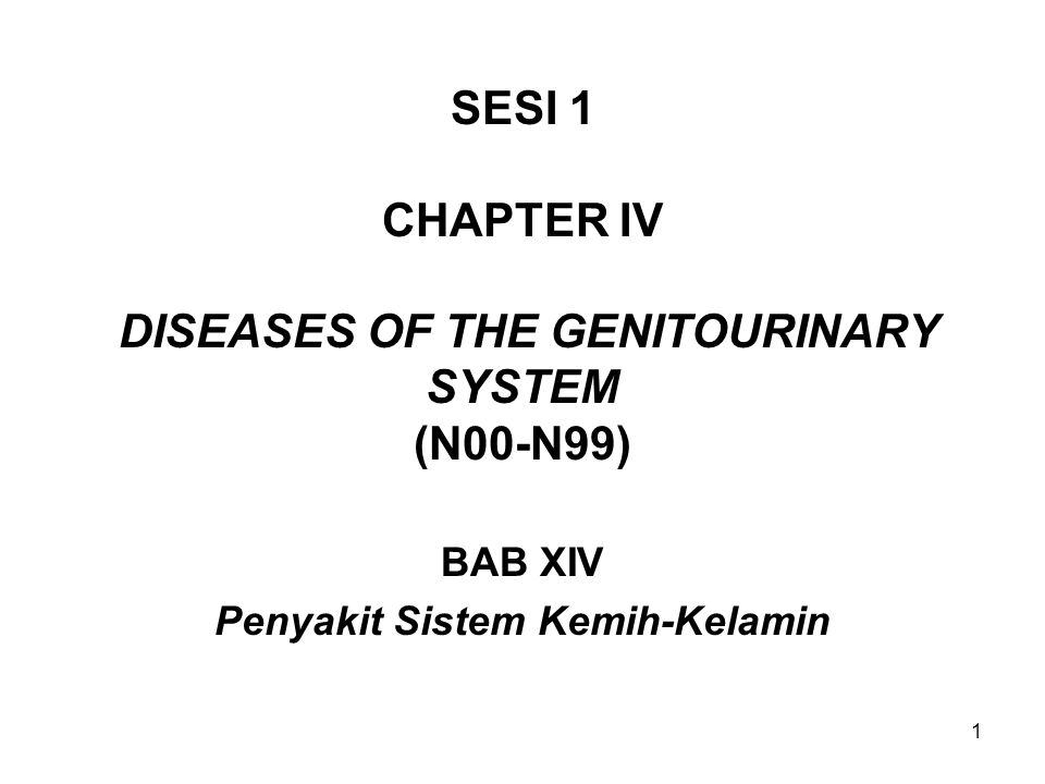 SESI 1 CHAPTER IV DISEASES OF THE GENITOURINARY SYSTEM (N00-N99)