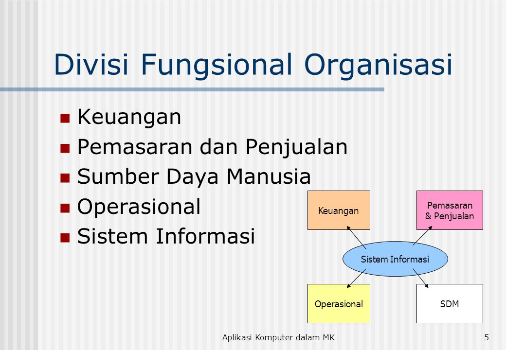 Divisi Fungsional Organisasi
