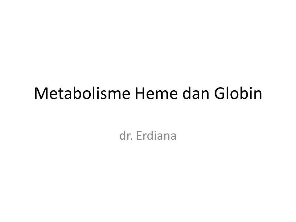 Metabolisme Heme dan Globin