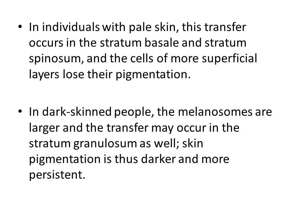 In individuals with pale skin, this transfer occurs in the stratum basale and stratum spinosum, and the cells of more superficial layers lose their pigmentation.
