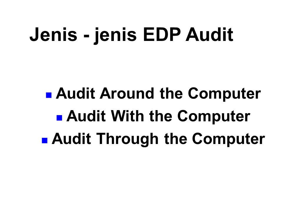 Jenis - jenis EDP Audit Audit Around the Computer
