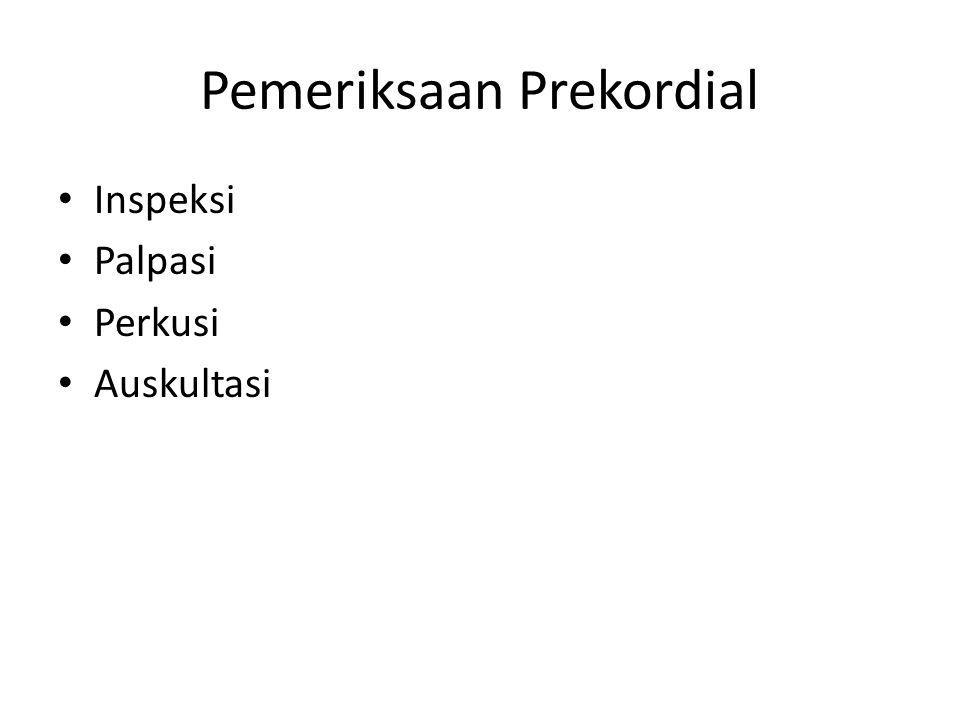 Pemeriksaan Prekordial
