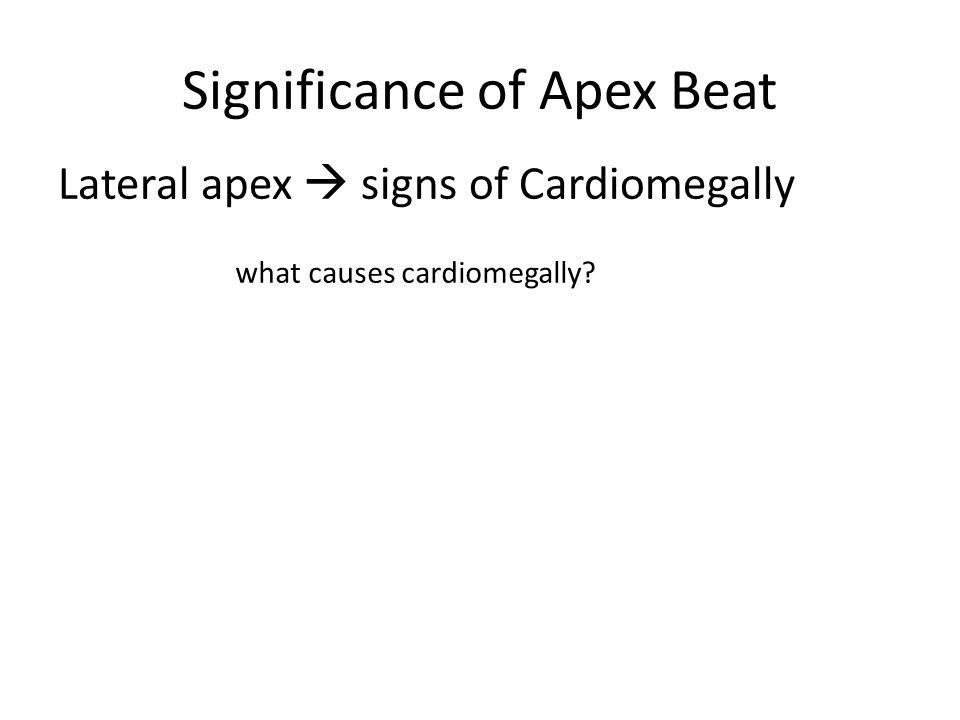 Significance of Apex Beat