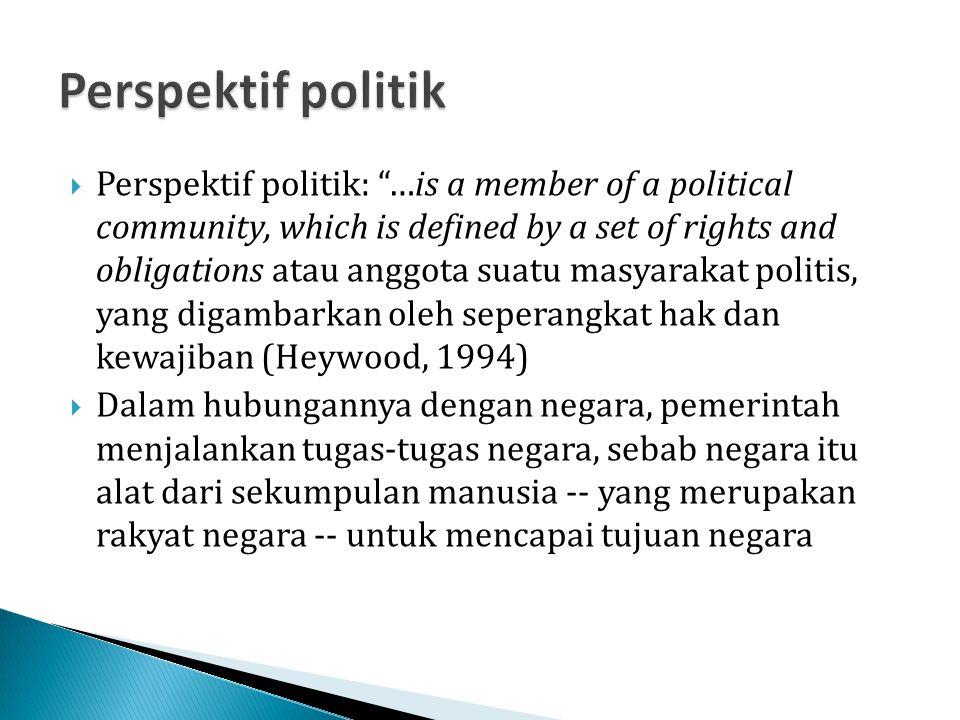 Perspektif politik