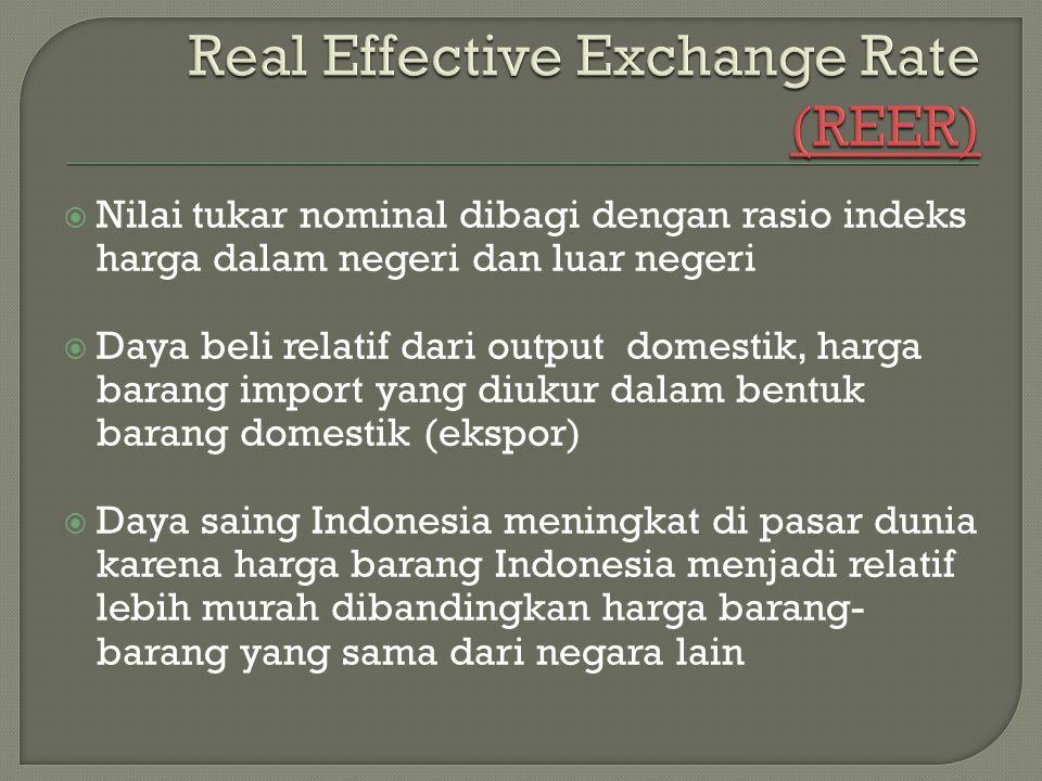 Real Effective Exchange Rate (REER)
