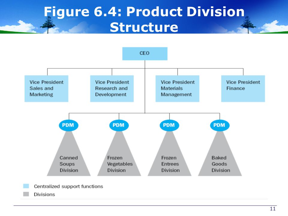 Figure 6.4: Product Division Structure