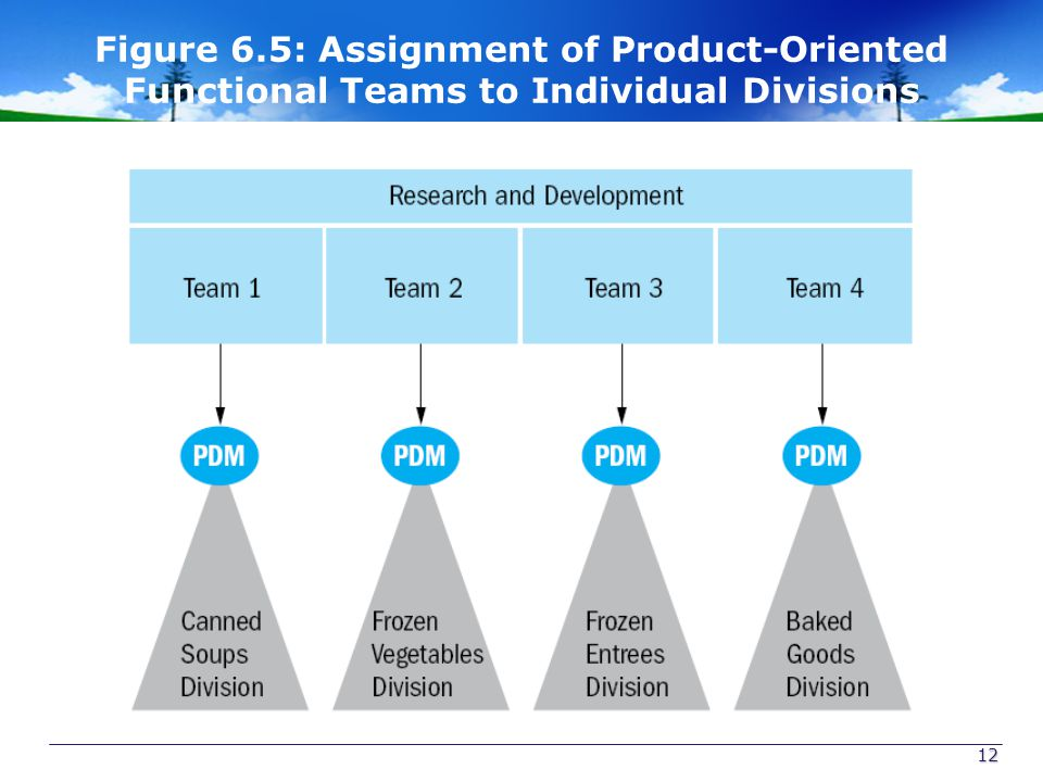 Figure 6.5: Assignment of Product-Oriented Functional Teams to Individual Divisions