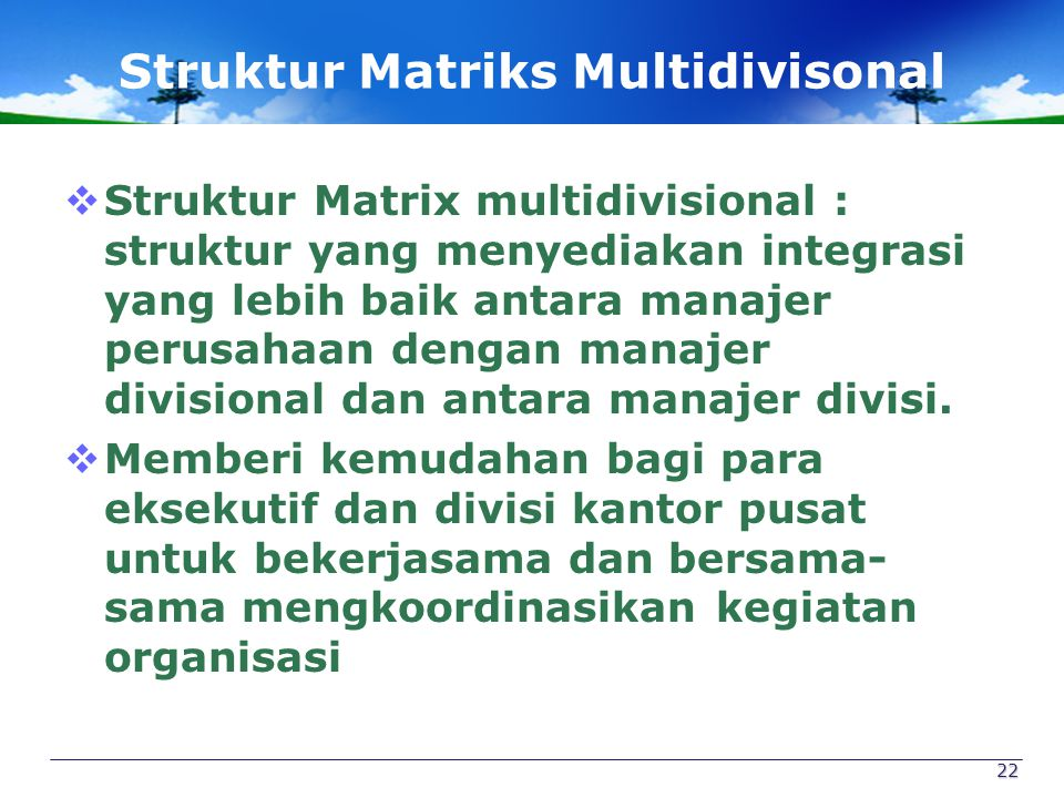 Struktur Matriks Multidivisonal