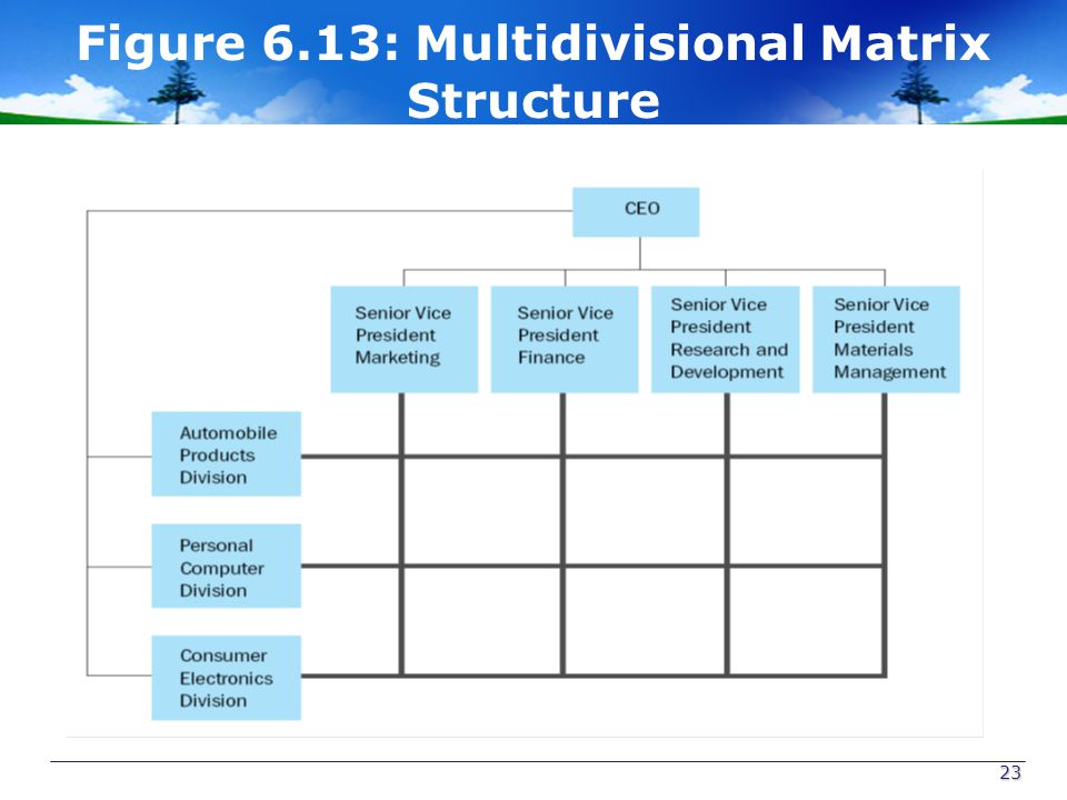 Figure 6.13: Multidivisional Matrix Structure