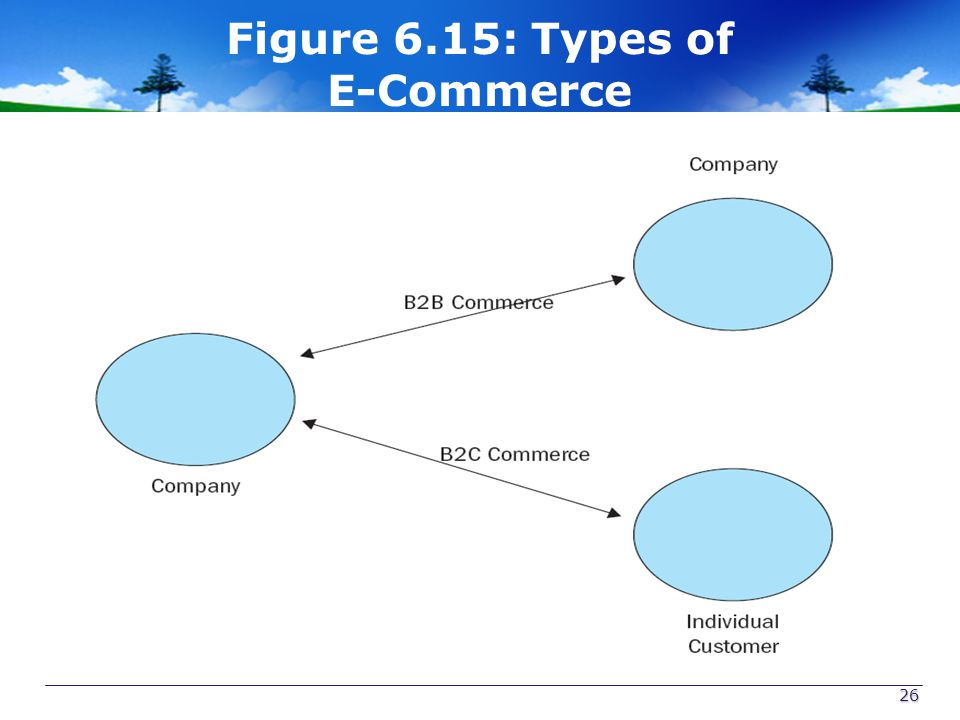 Figure 6.15: Types of E-Commerce