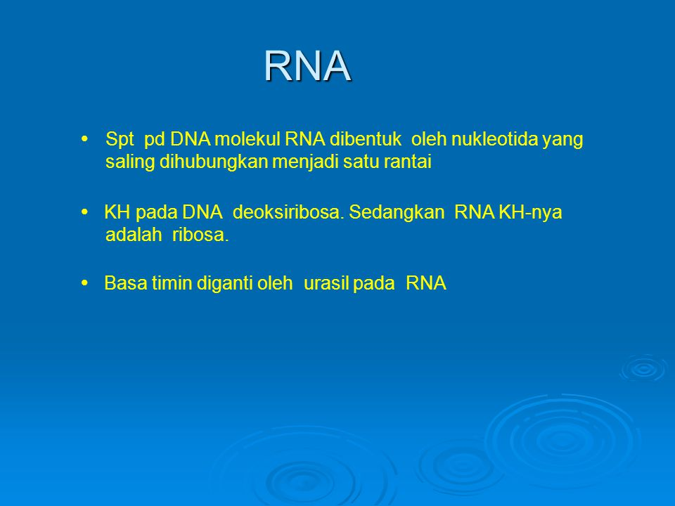 RNA Spt pd DNA molekul RNA dibentuk oleh nukleotida yang saling dihubungkan menjadi satu rantai.
