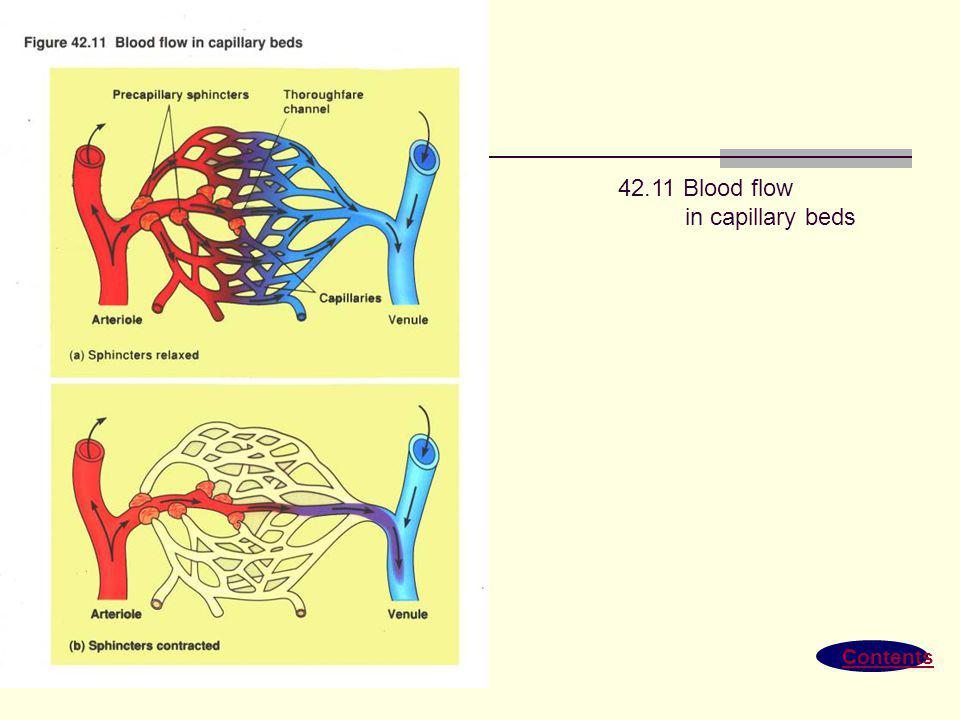 42.11 Blood flow in capillary beds Contents