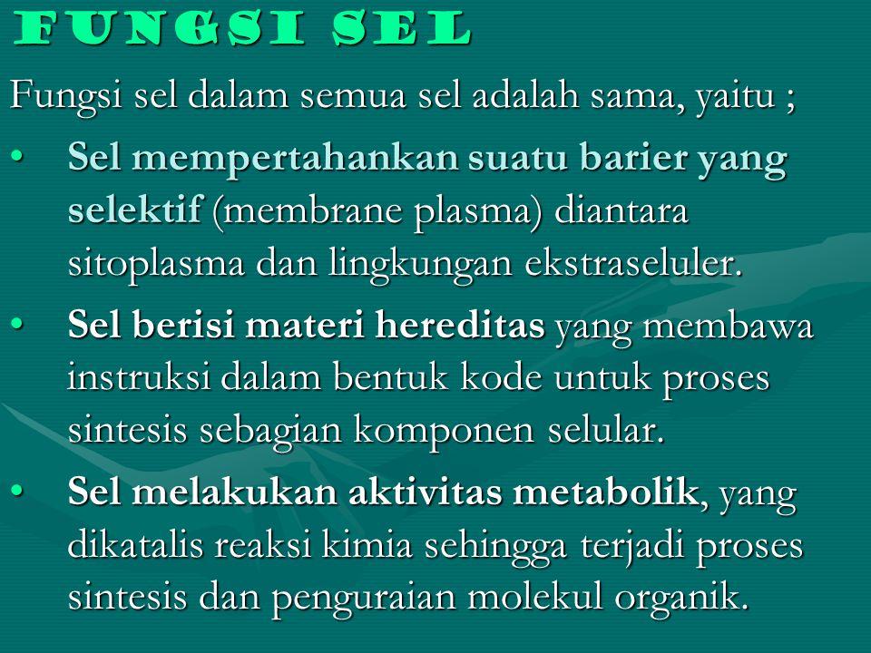 Fungsi sel Fungsi sel dalam semua sel adalah sama, yaitu ;