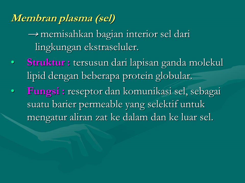 Membran plasma (sel) → memisahkan bagian interior sel dari lingkungan ekstraseluler.