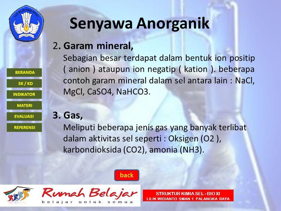Senyawa Anorganik 2. Garam mineral, 3. Gas,