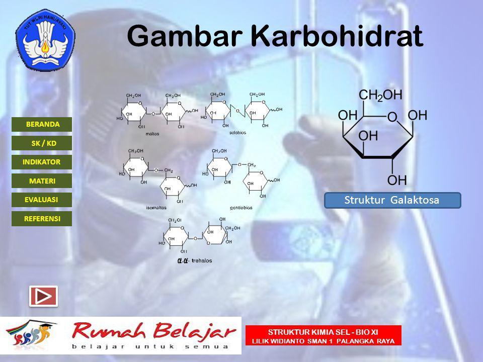 Gambar Karbohidrat Struktur Galaktosa