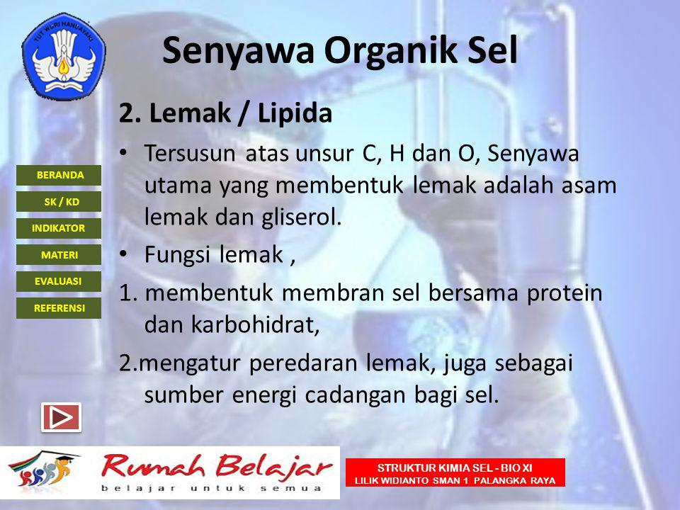 Senyawa Organik Sel 2. Lemak / Lipida