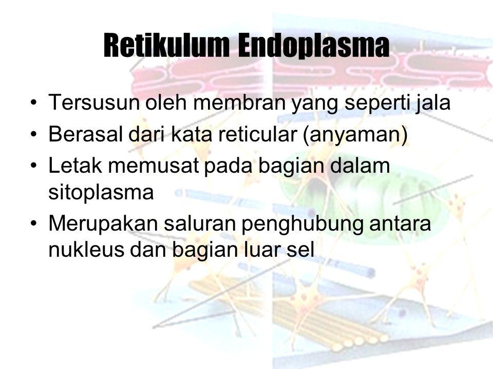 Retikulum Endoplasma Tersusun oleh membran yang seperti jala