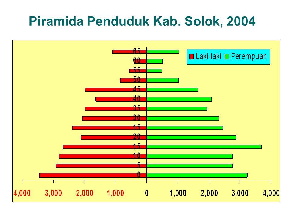 Piramida Penduduk Kab. Solok, 2004