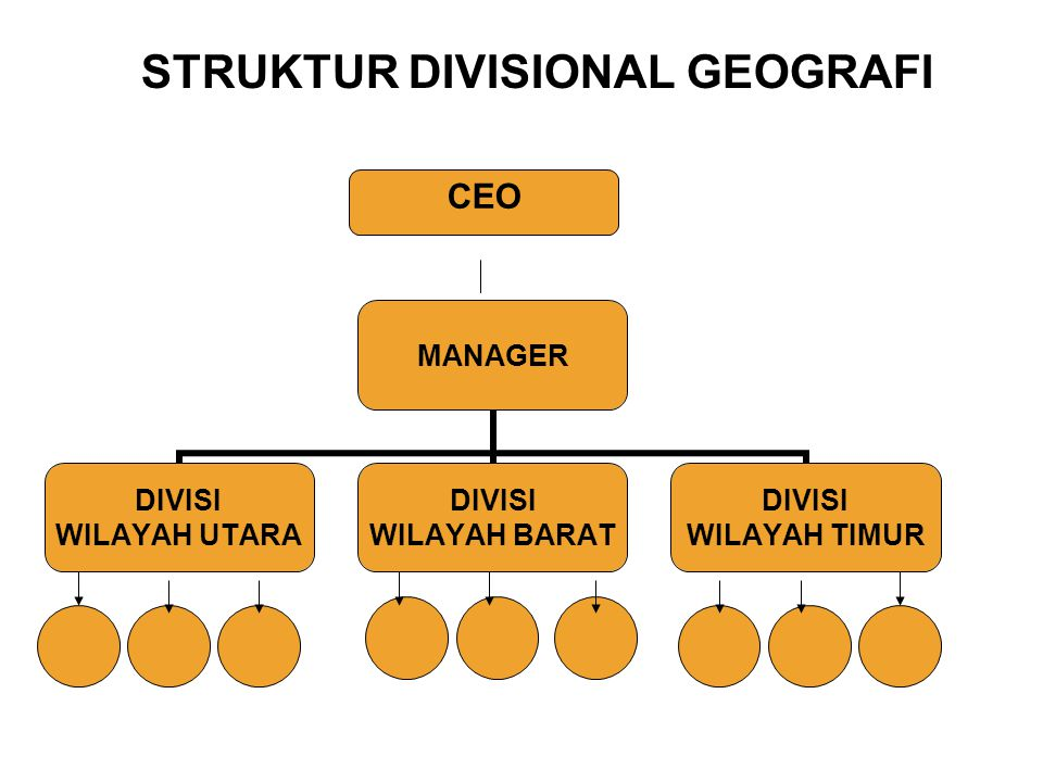 STRUKTUR DIVISIONAL GEOGRAFI