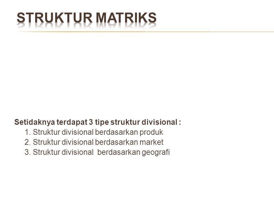 STRUKTUR MATRIKS Setidaknya terdapat 3 tipe struktur divisional :