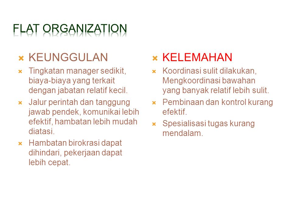FLAT ORGANIZATION KEUNGGULAN KELEMAHAN