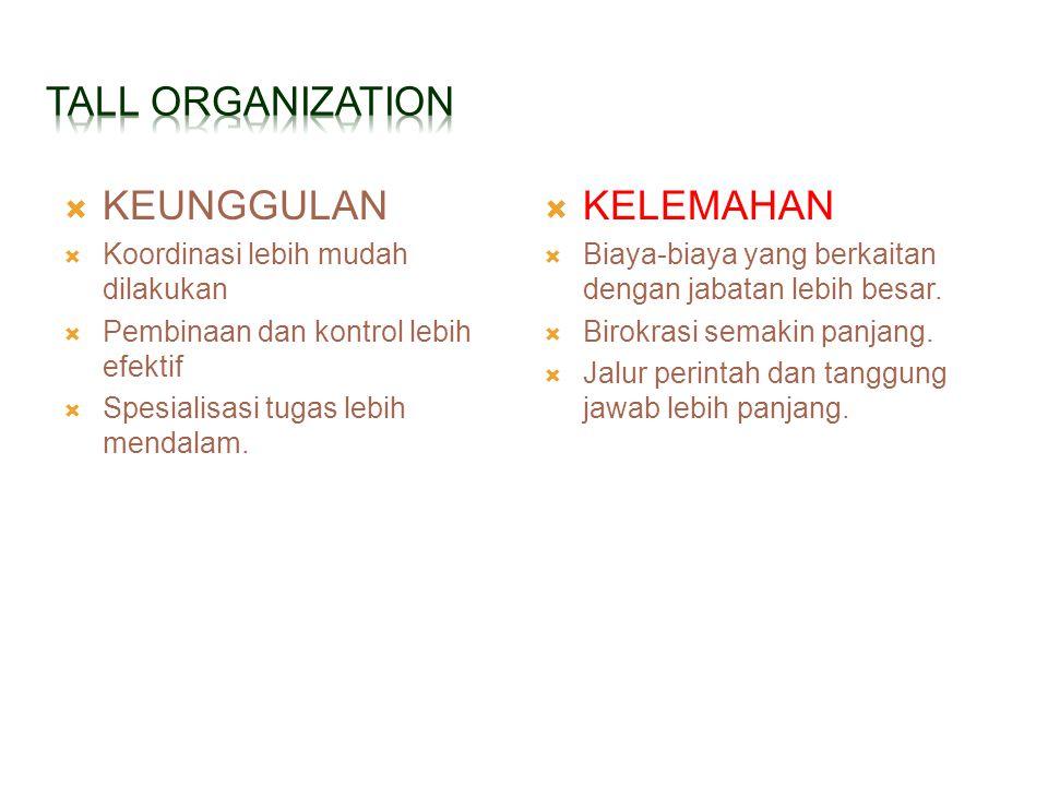 TALL ORGANIZATION KEUNGGULAN KELEMAHAN