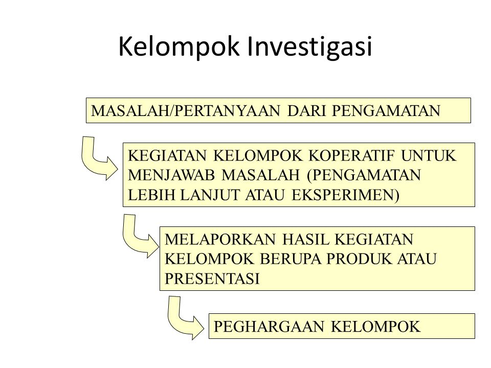 Kelompok Investigasi MASALAH/PERTANYAAN DARI PENGAMATAN