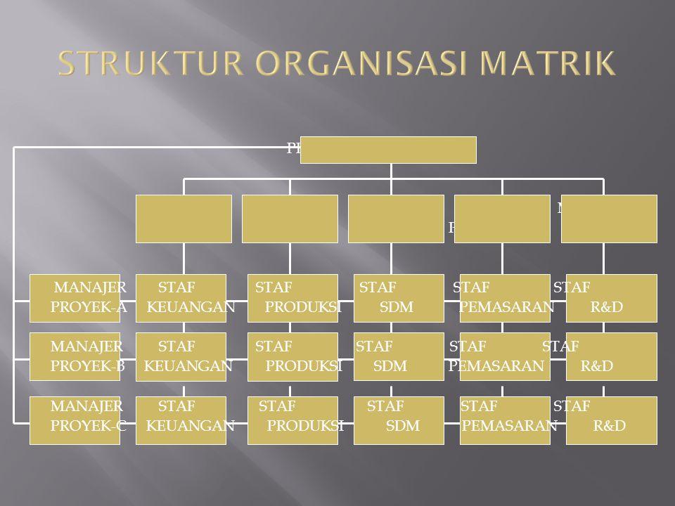 STRUKTUR ORGANISASI MATRIK