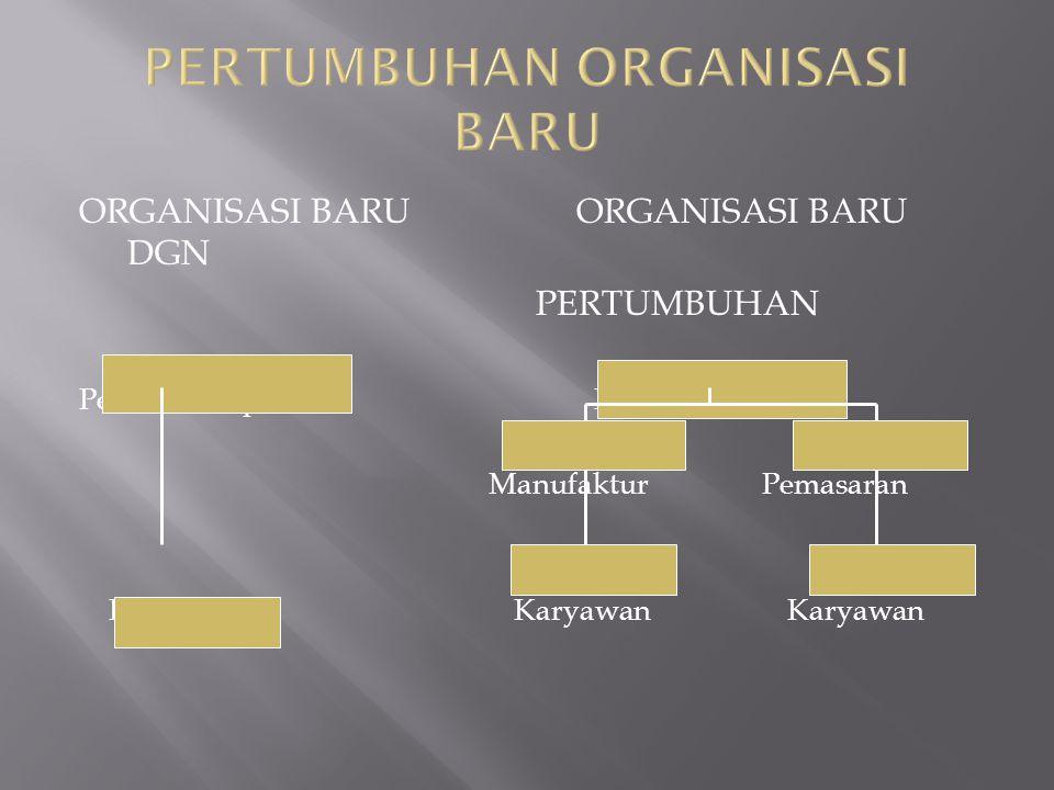 PERTUMBUHAN ORGANISASI BARU