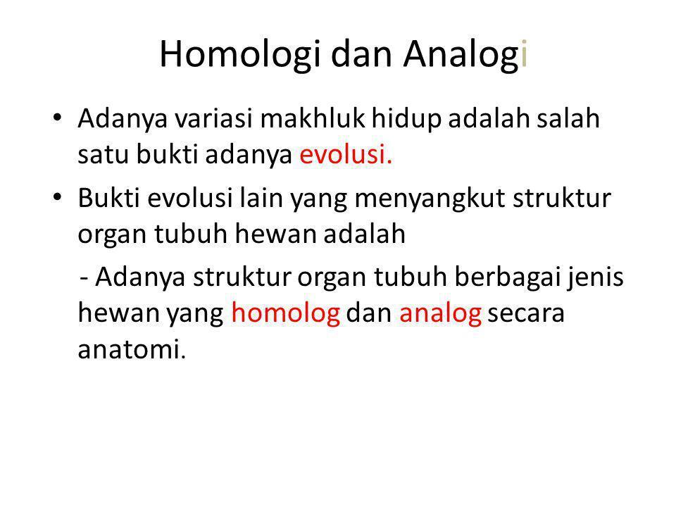 Homologi dan Analogi Adanya variasi makhluk hidup adalah salah satu bukti adanya evolusi.
