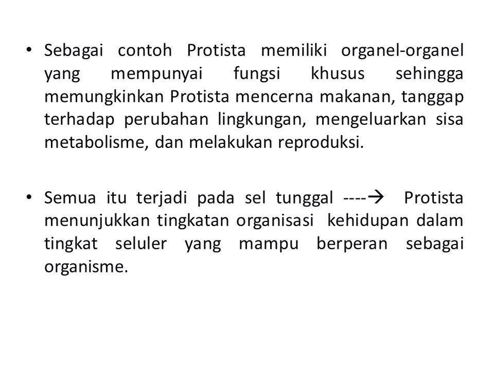 Sebagai contoh Protista memiliki organel-organel yang mempunyai fungsi khusus sehingga memungkinkan Protista mencerna makanan, tanggap terhadap perubahan lingkungan, mengeluarkan sisa metabolisme, dan melakukan reproduksi.
