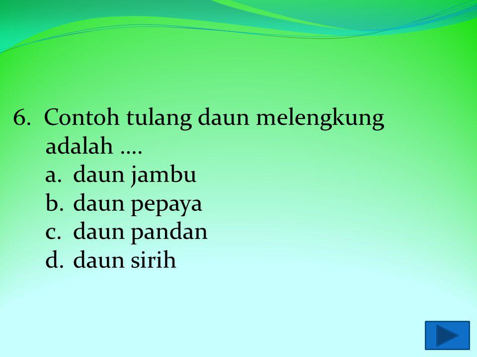 6. Contoh tulang daun melengkung adalah ….