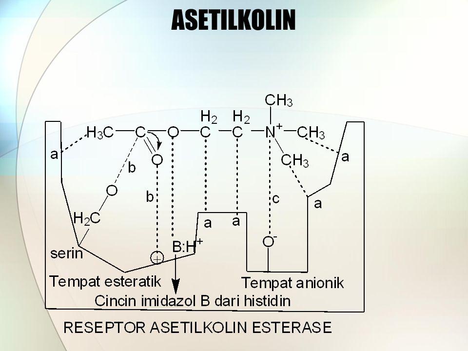ASETILKOLIN