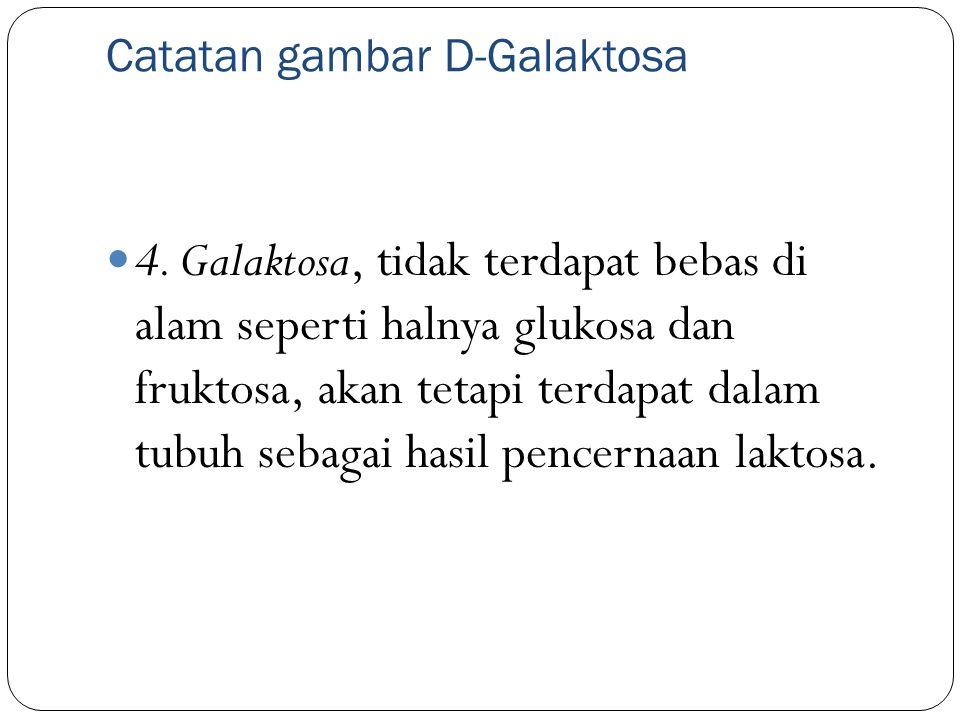 Catatan gambar D-Galaktosa