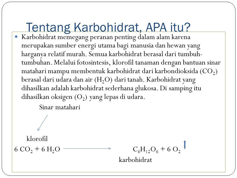 Tentang Karbohidrat, APA itu