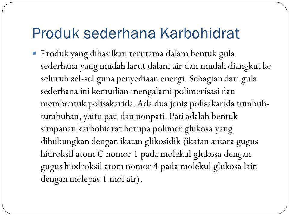 Produk sederhana Karbohidrat