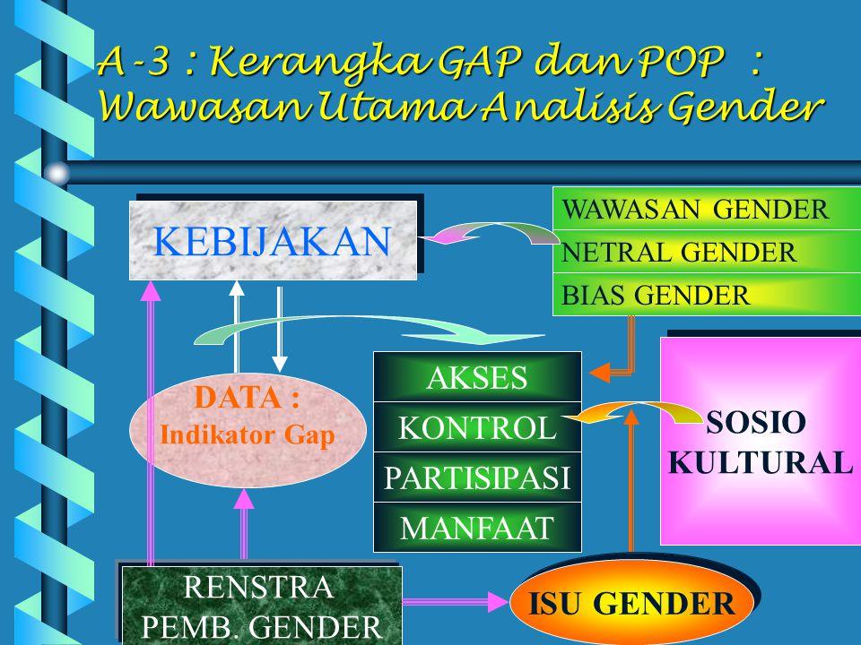 A-3 : Kerangka GAP dan POP : Wawasan Utama Analisis Gender