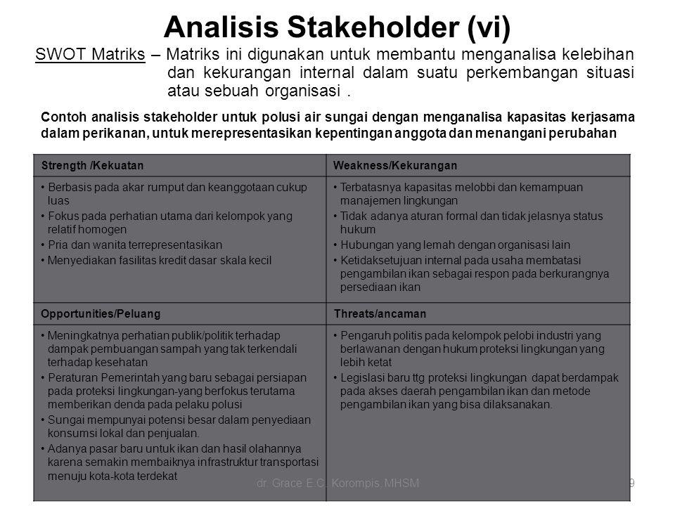 Analisis Stakeholder (vi)